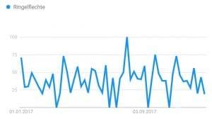 Ringelflechte Google Trends Körperpilz