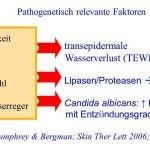 Windeldermatitis Faktoren